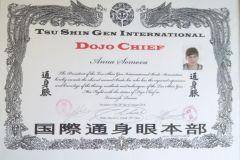 Сертификат Додзё Чиф Сомова