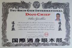 Сертификат Додзё Чиф Горшков