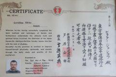 Сертификат 2 Дан Горшков